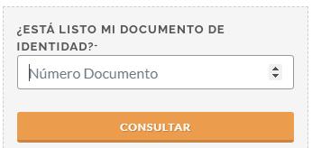 formato para ingresar numero de documento